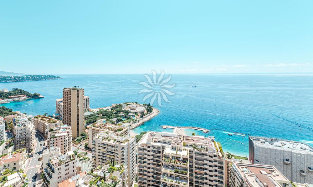 Appartamento con vista spettacolare sul Mare e Monaco